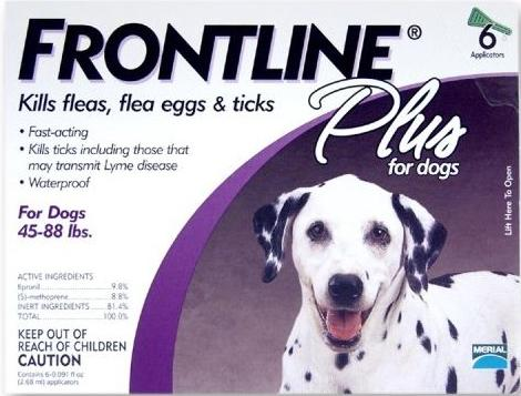 Frontline Treatment to get rid of fleas on dogs